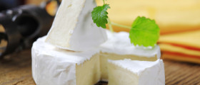 Camembert Käse