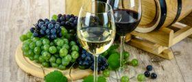 wine-1761613