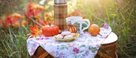 autumn-4579561_1920